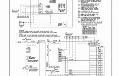 Y Plan Wiring Diagram For Nest