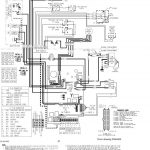 Trane Gas Furnace Wiring   Wiring Diagram   Nest Wiring Diagram Amana