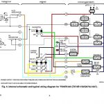 Wiring Diagram For Low Voltage Thermostat Circuit   Data Wiring   Nest Wiring Diagram Amanda