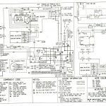 York Heat Pump Schematic | Manual E Books   1995 Weatherking Heat Pump Wiring Diagram For Nest 2